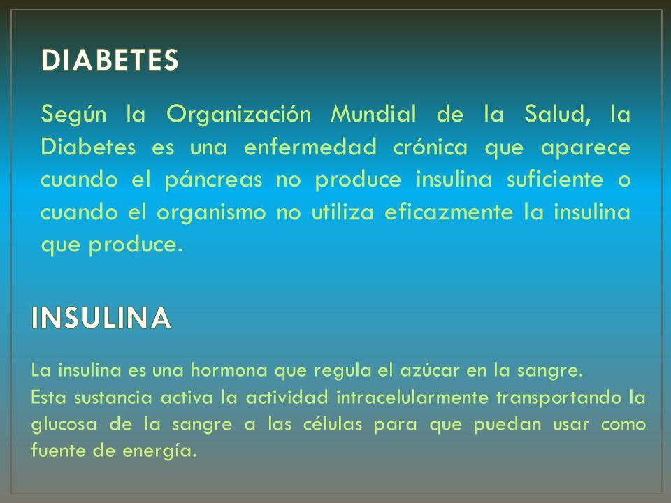 Diabetes tipo 1 Diabetes tipo 2 Diabetes gestacional