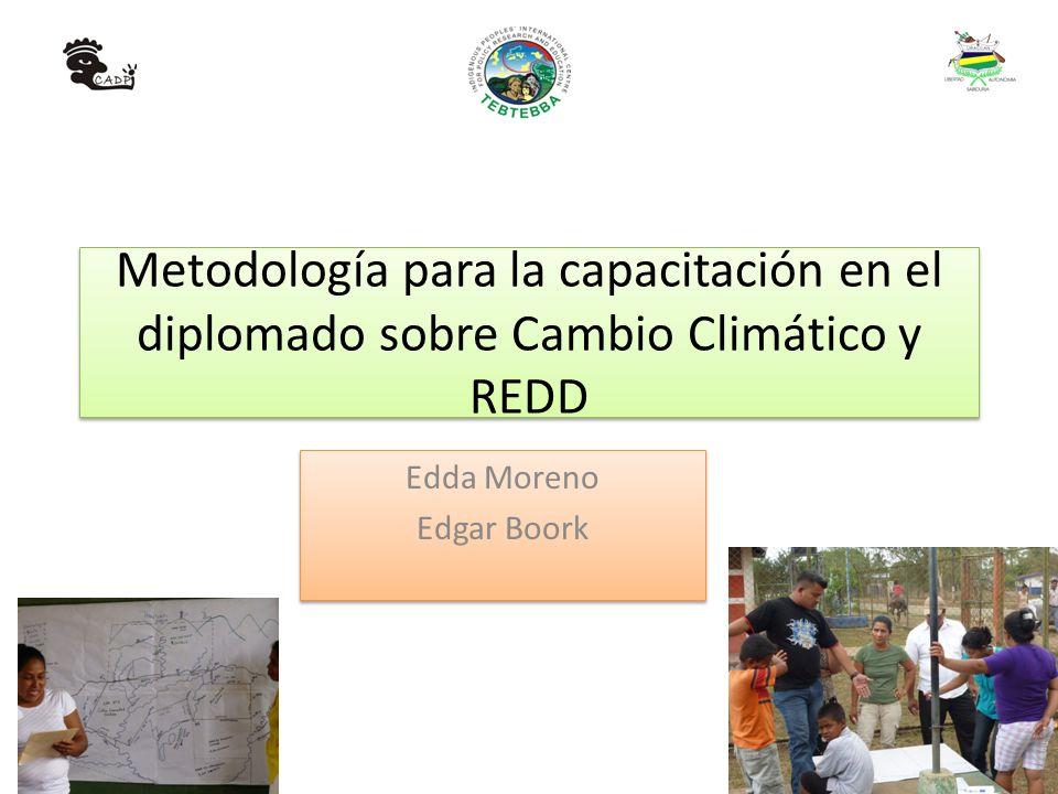 Metodología para la capacitación en el diplomado sobre Cambio Climático y REDD Edda Moreno Edgar Boork Edda Moreno Edgar Boork