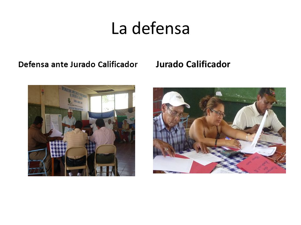 La defensa Defensa ante Jurado Calificador Jurado Calificador