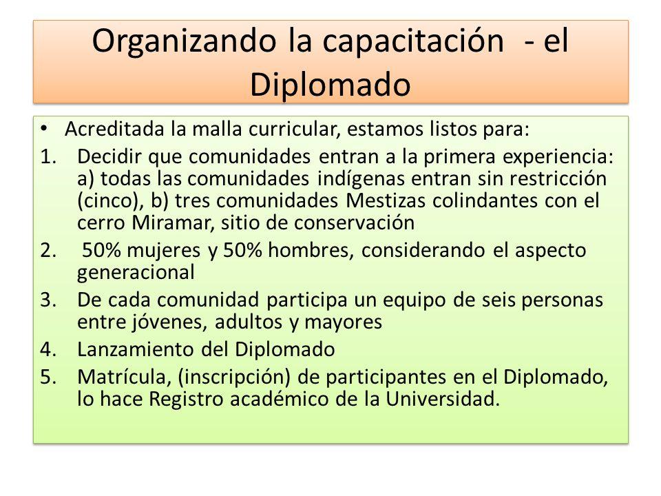El Diplomado 1.Programa de implementación, Malla curricular, que contiene los temas y contenidos del diplomado, organizados por módulos, la estrategia educativa, /Metodología, el sistema de evaluación, recursos de apoyo académico, la bibliografía a utilizar.