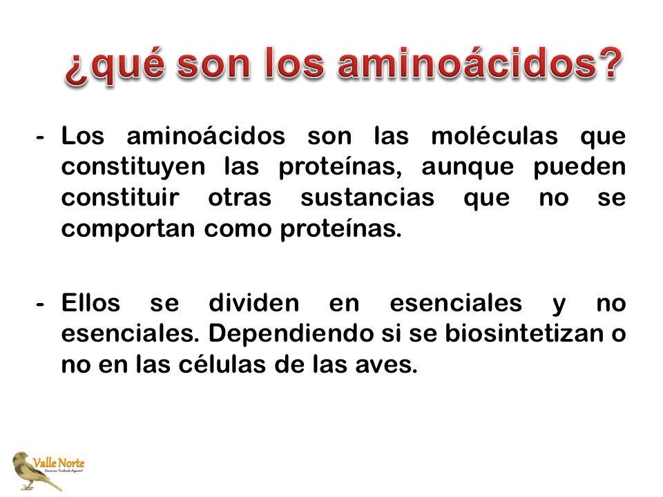 -Los aminoácidos son las moléculas que constituyen las proteínas, aunque pueden constituir otras sustancias que no se comportan como proteínas. -Ellos