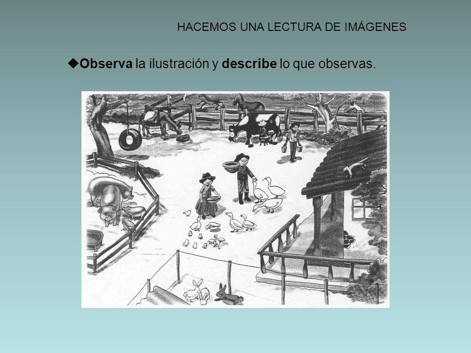 HACEMOS UNA LECTURA DE IMÁGENES Observa la ilustración y describe lo que observas.