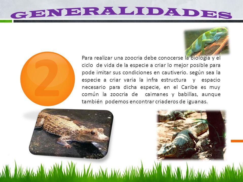 2 Para realizar una zoocria debe conocerse la biología y el ciclo de vida de la especie a criar lo mejor posible para pode imitar sus condiciones en c