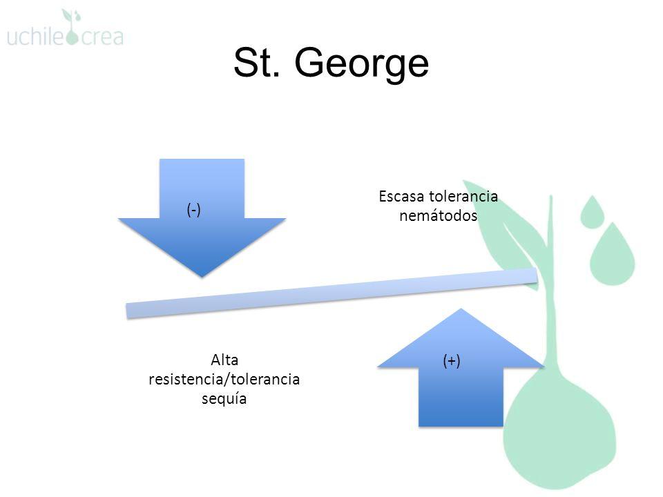 St. George (+) (-)