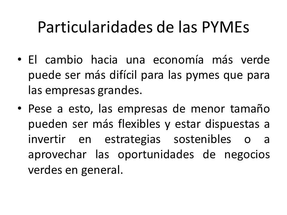 Particularidades de las PYMEs El cambio hacia una economía más verde puede ser más difícil para las pymes que para las empresas grandes.