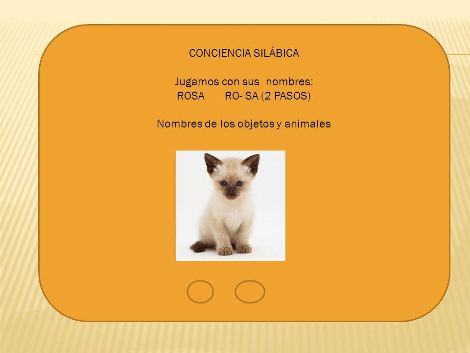 CONCIENCIA SILÁBICA Jugamos con sus nombres: ROSA RO- SA (2 PASOS) Nombres de los objetos y animales
