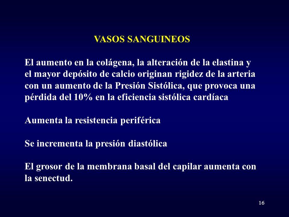 VASOS SANGUINEOS El aumento en la colágena, la alteración de la elastina y el mayor depósito de calcio originan rigidez de la arteria con un aumento d