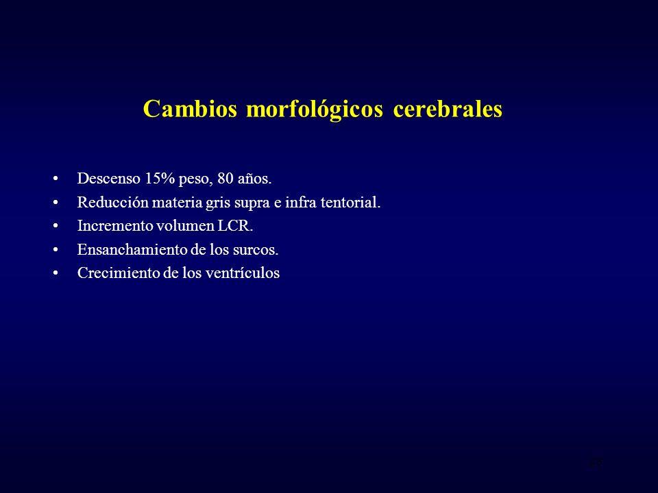 Cambios morfológicos cerebrales Descenso 15% peso, 80 años.