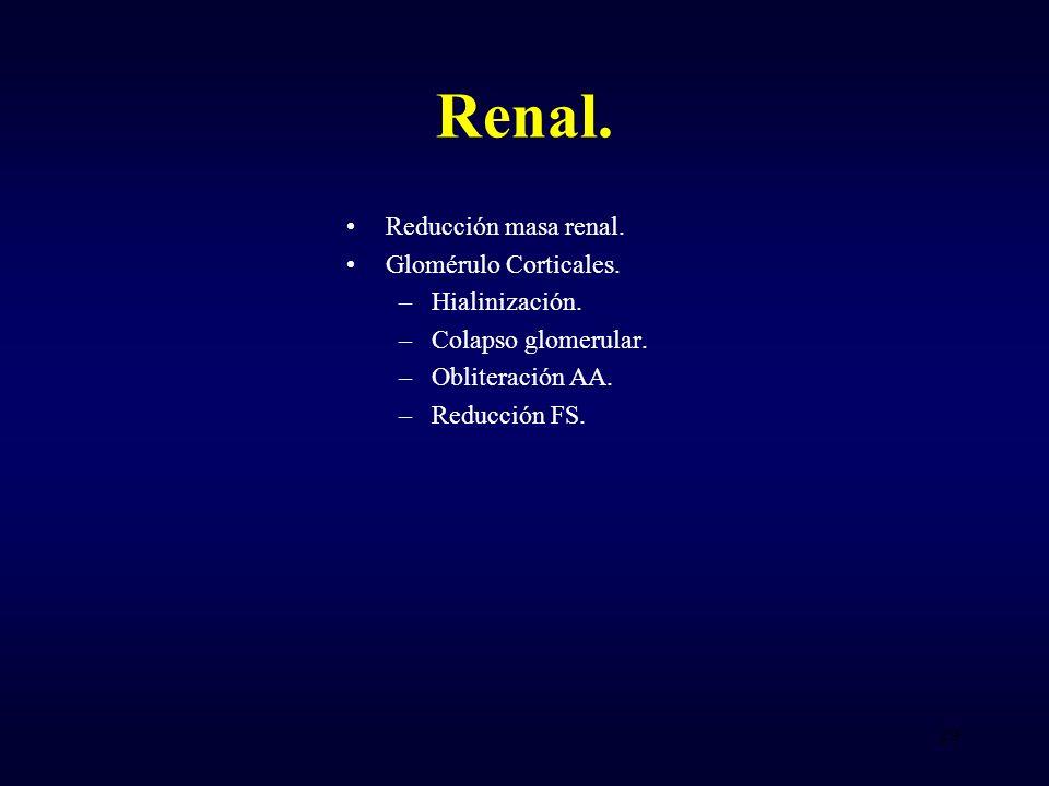 Renal.Reducción masa renal. Glomérulo Corticales.