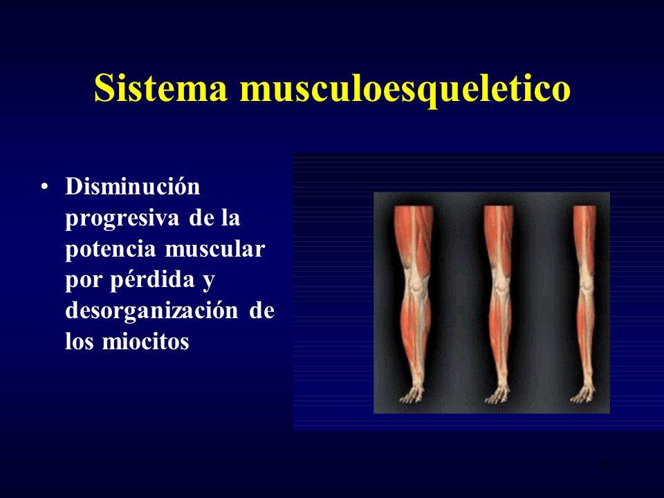 Sistema musculoesqueletico Disminución progresiva de la potencia muscular por pérdida y desorganización de los miocitos 8