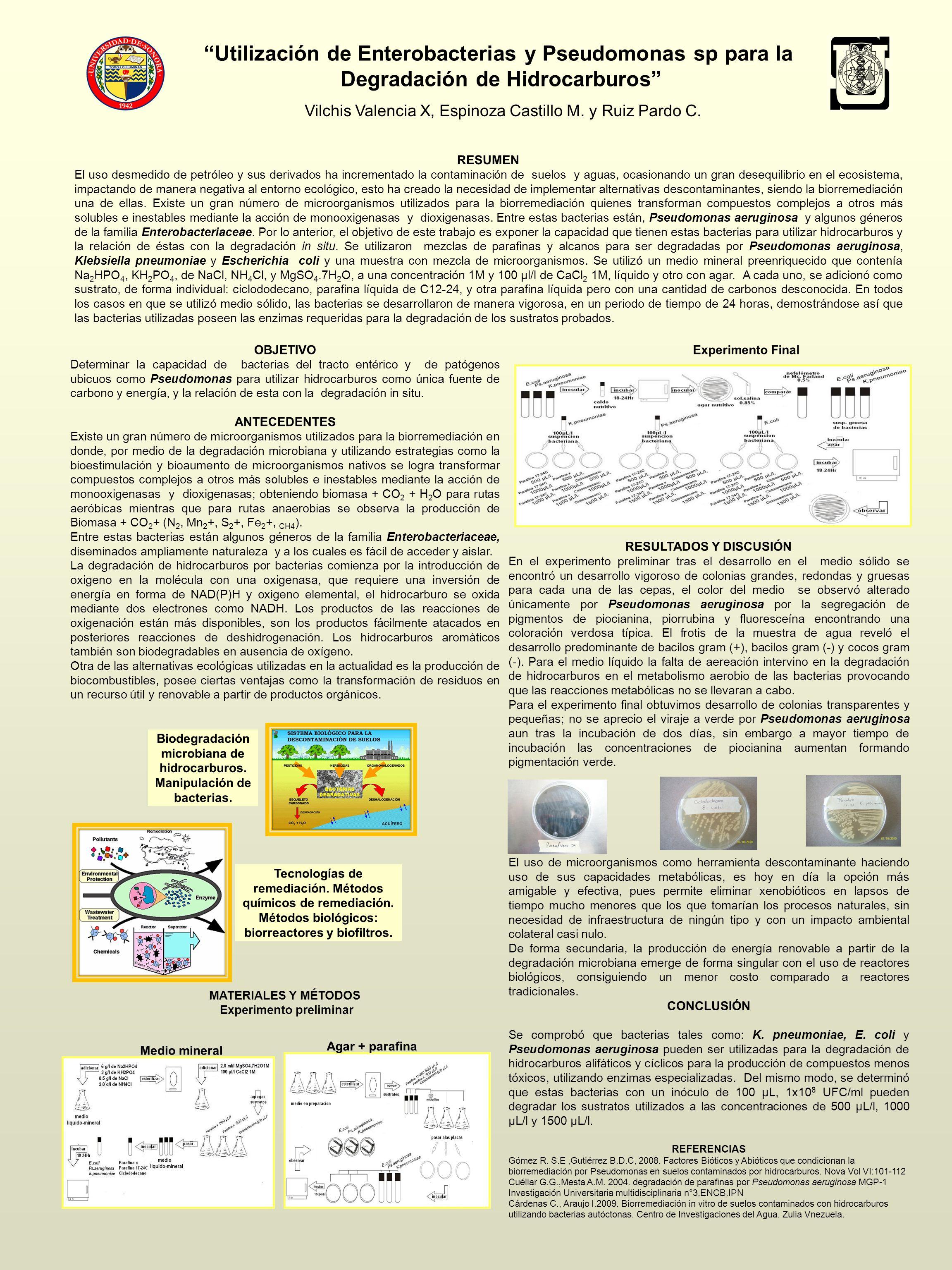 Utilización de Enterobacterias y Pseudomonas sp para la Degradación de Hidrocarburos Vilchis Valencia X, Espinoza Castillo M. y Ruiz Pardo C. RESUMEN