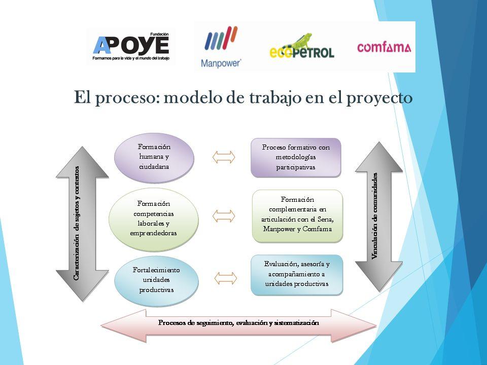 El proceso: modelo de trabajo en el proyecto
