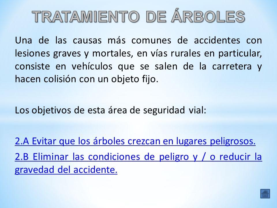 Una de las causas más comunes de accidentes con lesiones graves y mortales, en vías rurales en particular, consiste en vehículos que se salen de la ca
