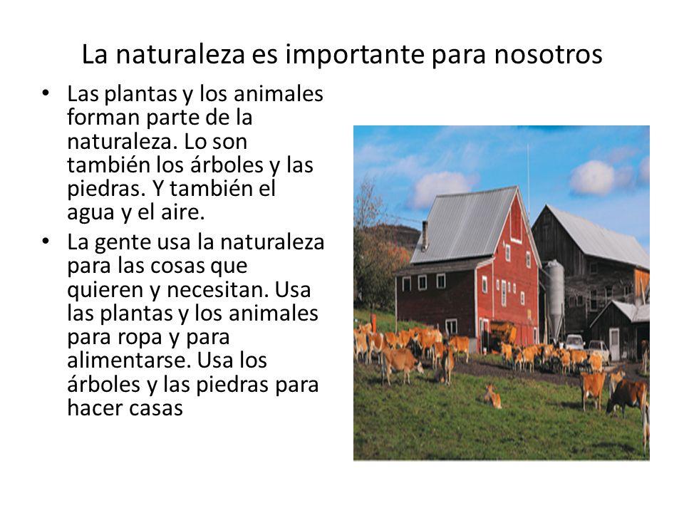 La naturaleza es importante para nosotros Las plantas y los animales forman parte de la naturaleza. Lo son también los árboles y las piedras. Y tambié