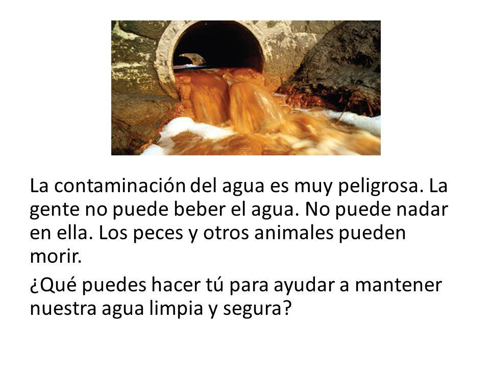 La contaminación del agua es muy peligrosa. La gente no puede beber el agua. No puede nadar en ella. Los peces y otros animales pueden morir. ¿Qué pue