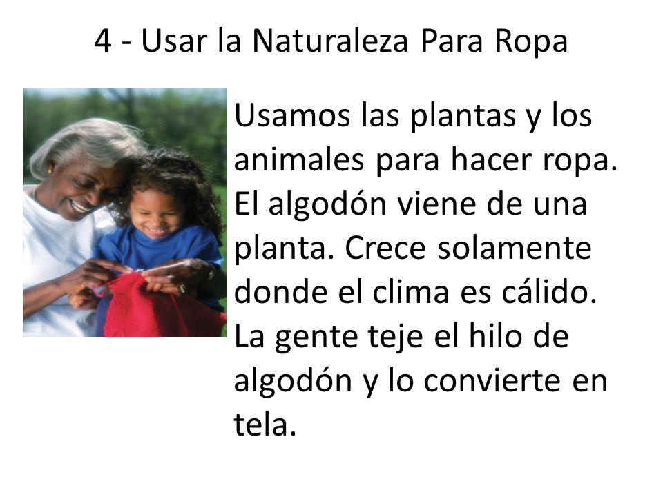 4 - Usar la Naturaleza Para Ropa Usamos las plantas y los animales para hacer ropa. El algodón viene de una planta. Crece solamente donde el clima es