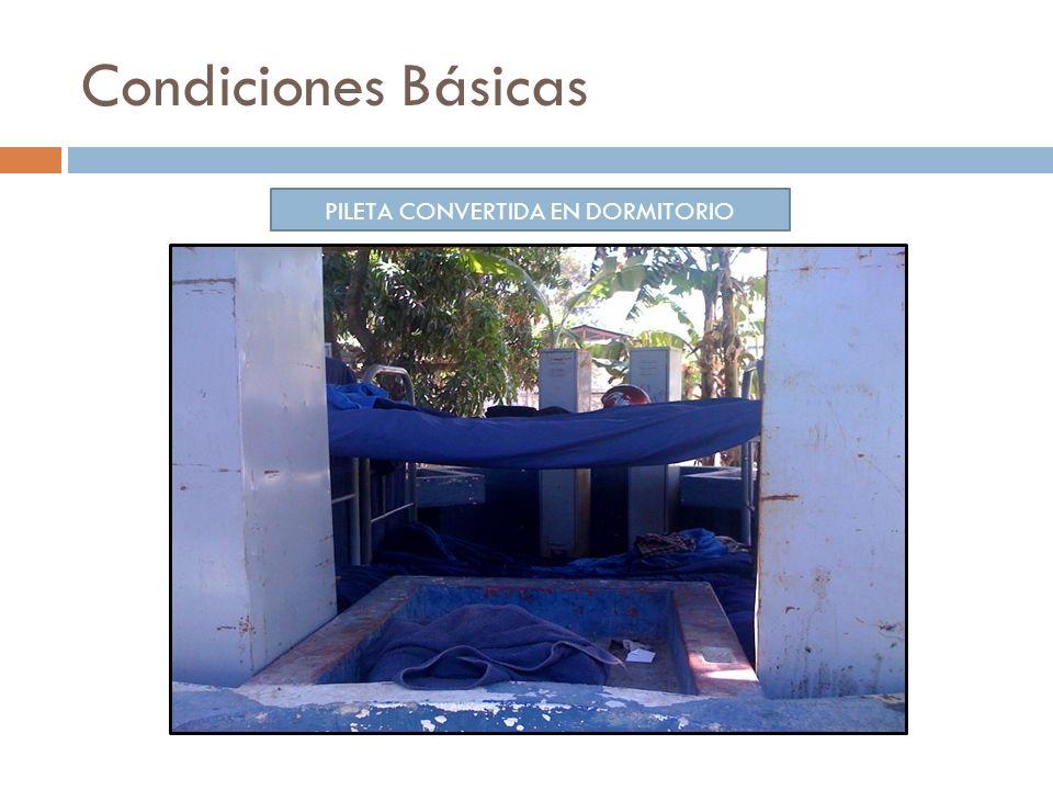 Condiciones Básicas PILETA CONVERTIDA EN DORMITORIO