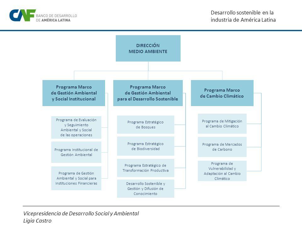 Vicepresidencia de Desarrollo Social y Ambiental Ligia Castro Desarrollo sostenible en la industria de América Latina Programa Marco de Gestión Ambien