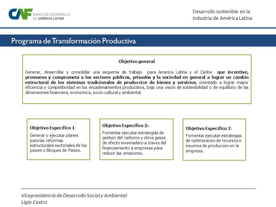 Vicepresidencia de Desarrollo Social y Ambiental Ligia Castro Desarrollo sostenible en la industria de América Latina Objetivo general Generar, desarr