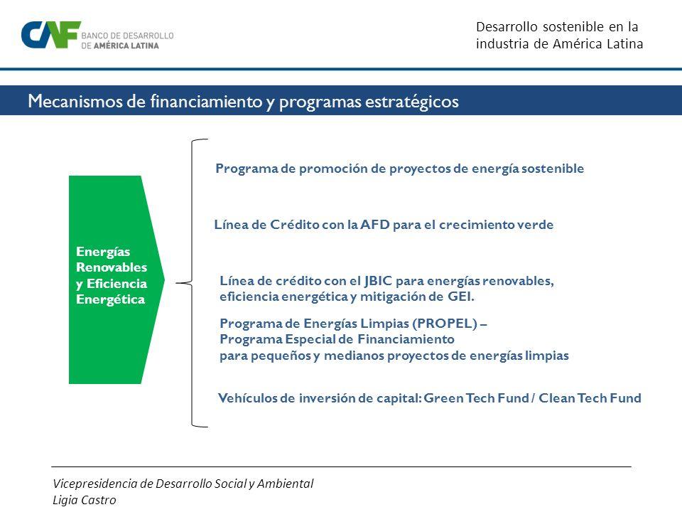 Energías Renovables y Eficiencia Energética Programa de promoción de proyectos de energía sostenible Programa de Energías Limpias (PROPEL) –Programa E
