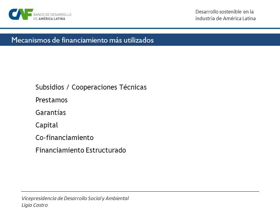 Vicepresidencia de Desarrollo Social y Ambiental Ligia Castro Desarrollo sostenible en la industria de América Latina Subsidios / Cooperaciones Técnic