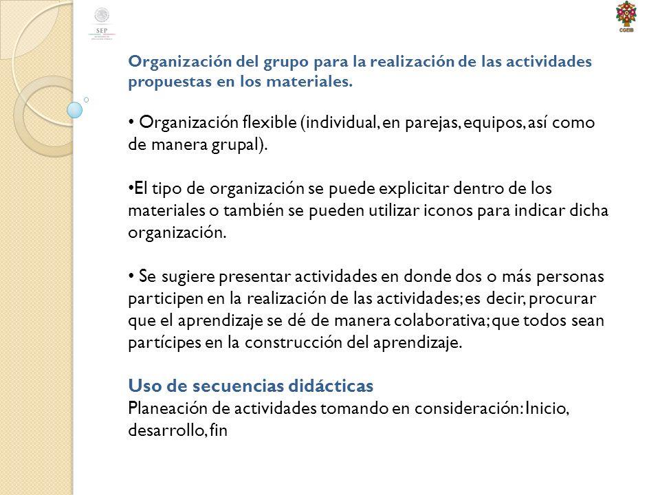 Organización del grupo para la realización de las actividades propuestas en los materiales.