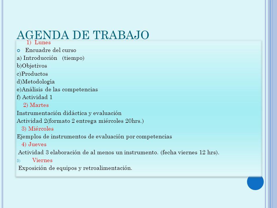 AGENDA DE TRABAJO 1) Lunes Encuadre del curso a) Introducción (tiempo) b)Objetivos c)Productos d)Metodología e)Análisis de las competencias f) Activid