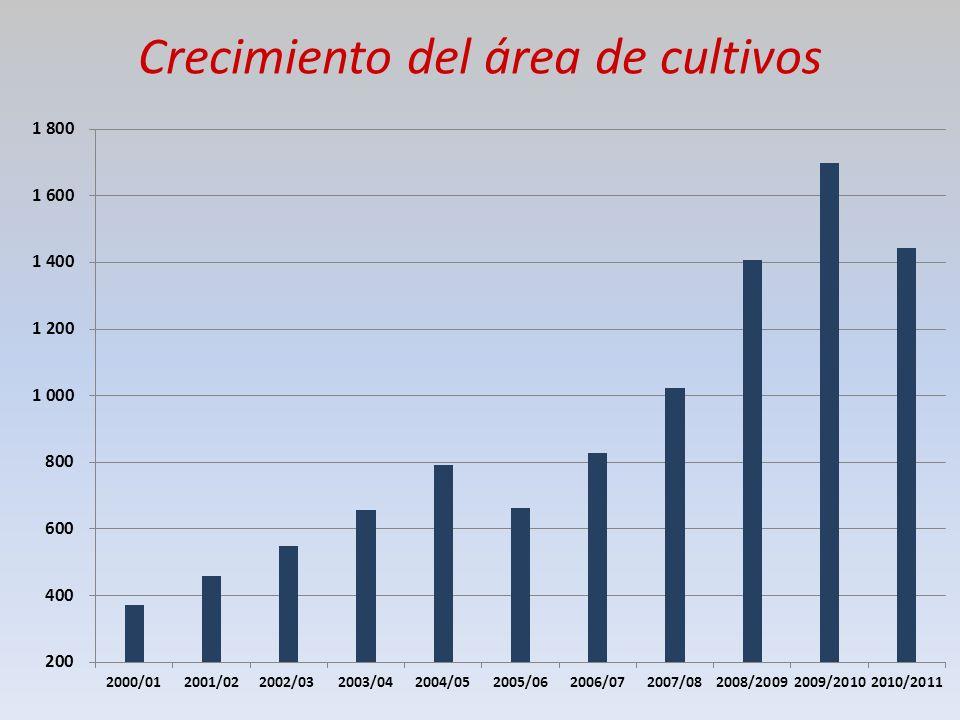 Crecimiento del área de cultivos
