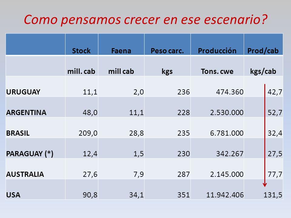 Como pensamos crecer en ese escenario. StockFaenaPeso carc.ProducciónProd/cab mill.