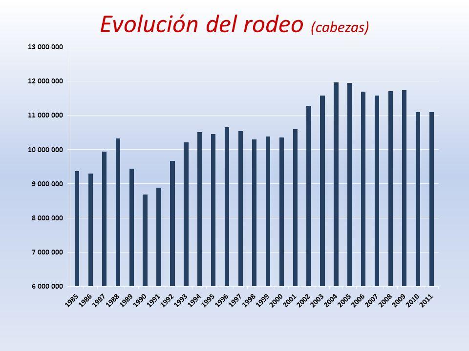 Cuanto creció la ganadería Promedio 1990/92 vs 2009/11 La faena aumentó de 1,26 millones a 2,2 millones de cabezas (+73 % ; 2,6 millones en 2006) Las exportaciones crecieron de 144 a 365 mil toneladas e.c.