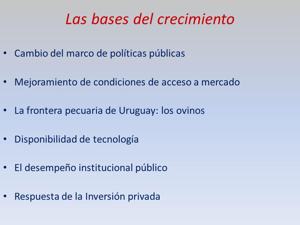 Porqué estuvo estancada durante décadas la ganadería uruguaya.