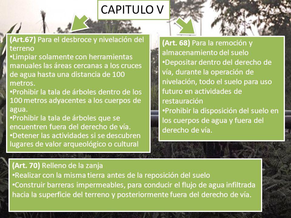 CAPITULO V (Art. 68) Para la remoción y almacenamiento del suelo Depositar dentro del derecho de vía, durante la operación de nivelación, todo el suel