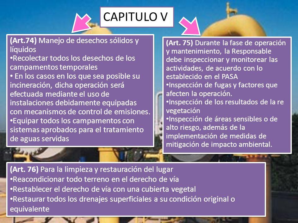 CAPITULO V (Art. 75) Durante la fase de operación y mantenimiento, la Responsable debe inspeccionar y monitorear las actividades, de acuerdo con lo es