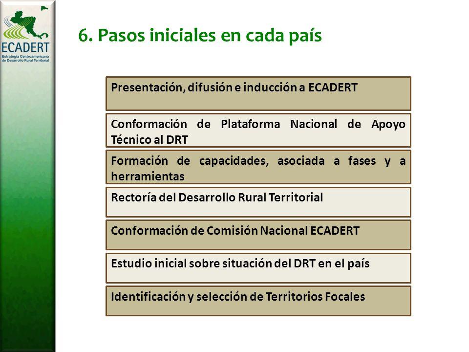 Estudio inicial sobre situación del DRT en el país Conformación de Comisión Nacional ECADERT Rectoría del Desarrollo Rural Territorial Formación de capacidades, asociada a fases y a herramientas Conformación de Plataforma Nacional de Apoyo Técnico al DRT Presentación, difusión e inducción a ECADERT 6.