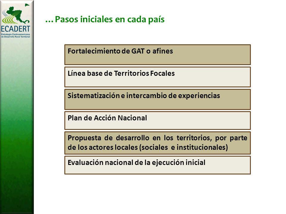 Evaluación nacional de la ejecución inicial Propuesta de desarrollo en los territorios, por parte de los actores locales (sociales e institucionales) Plan de Acción Nacional Sistematización e intercambio de experiencias Línea base de Territorios Focales Fortalecimiento de GAT o afines …Pasos iniciales en cada país