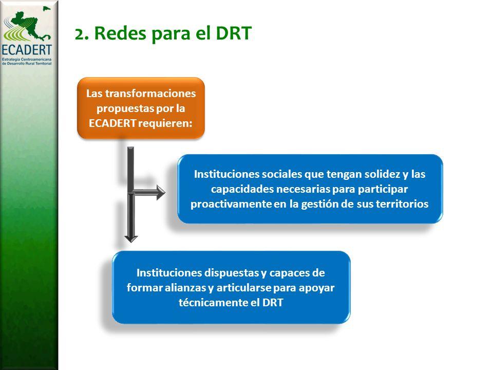 2. Redes para el DRT Las transformaciones propuestas por la ECADERT requieren: Instituciones sociales que tengan solidez y las capacidades necesarias
