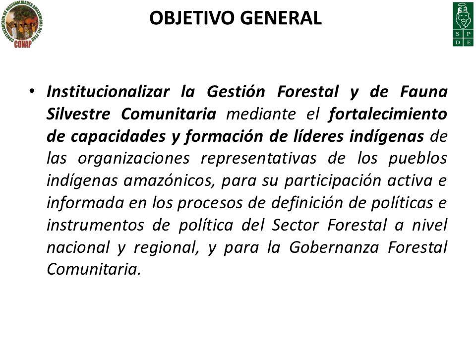 OBJETIVO GENERAL Institucionalizar la Gestión Forestal y de Fauna Silvestre Comunitaria mediante el fortalecimiento de capacidades y formación de líde