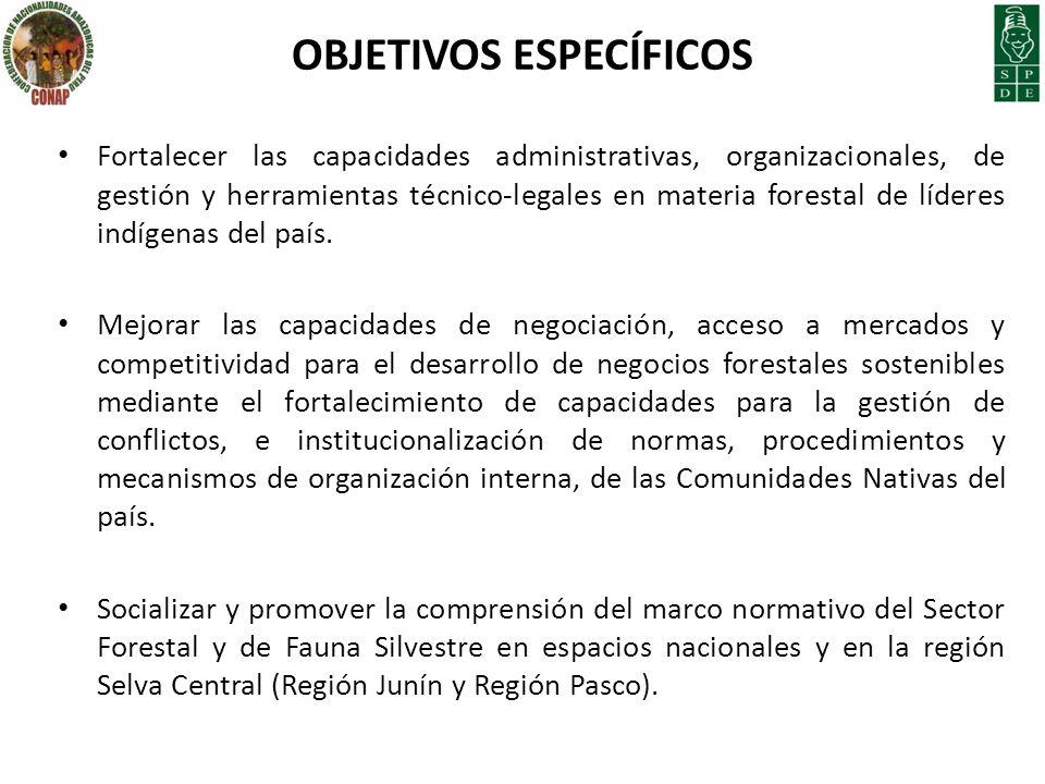 OBJETIVOS ESPECÍFICOS Fortalecer las capacidades administrativas, organizacionales, de gestión y herramientas técnico-legales en materia forestal de l