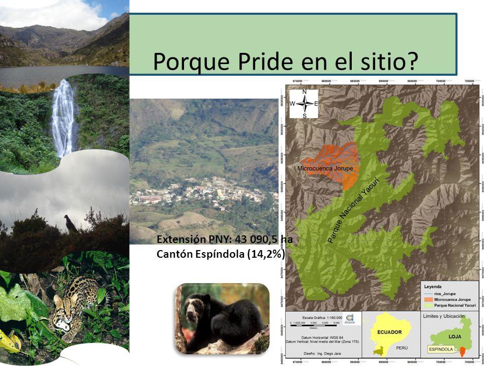 Porque Pride en el sitio? Extensión PNY: 43 090,5 ha Cantón Espíndola (14,2%)