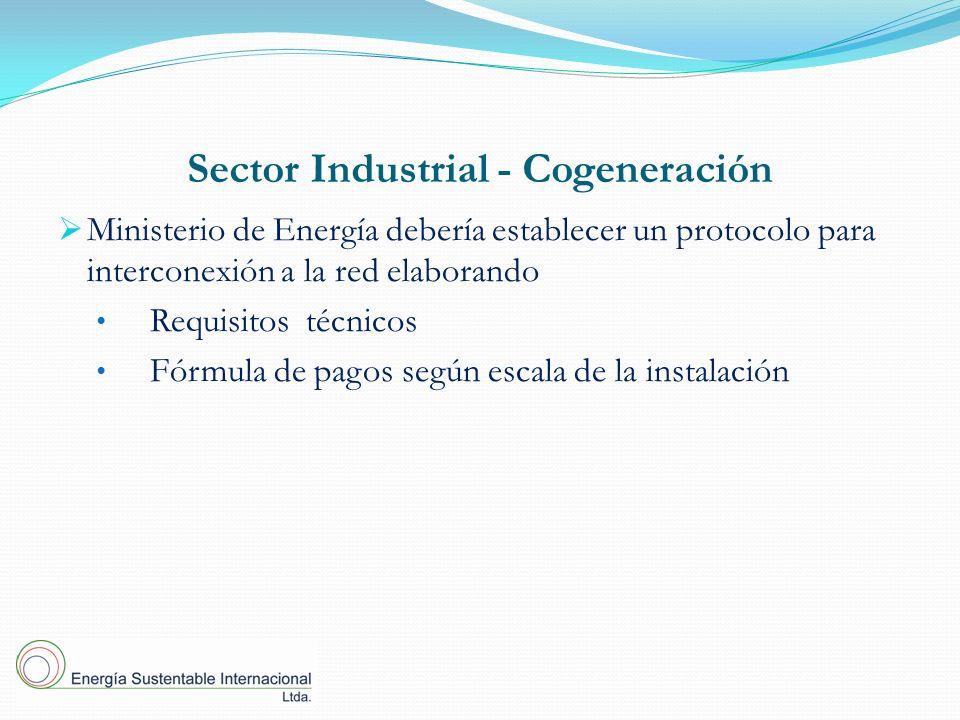 Sector Industrial - Cogeneración Ministerio de Energía debería establecer un protocolo para interconexión a la red elaborando Requisitos técnicos Fórmula de pagos según escala de la instalación