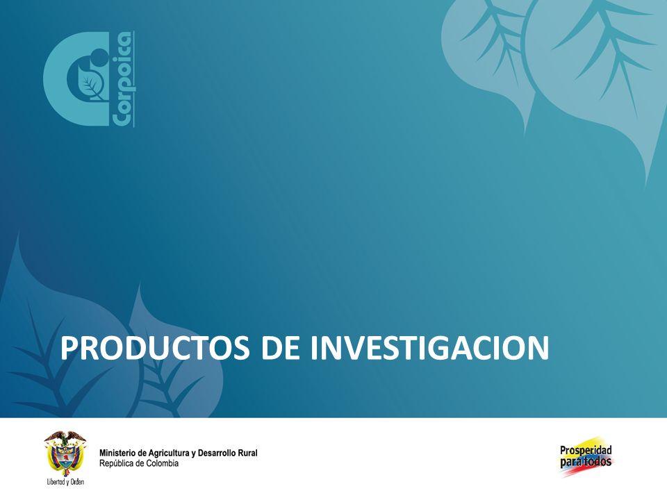 PRODUCTOS DE INVESTIGACION