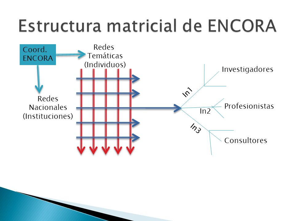 Redes Temáticas (Individuos) Redes Nacionales (Instituciones) Investigadores Profesionistas Consultores In1 In2 In3 Coord.