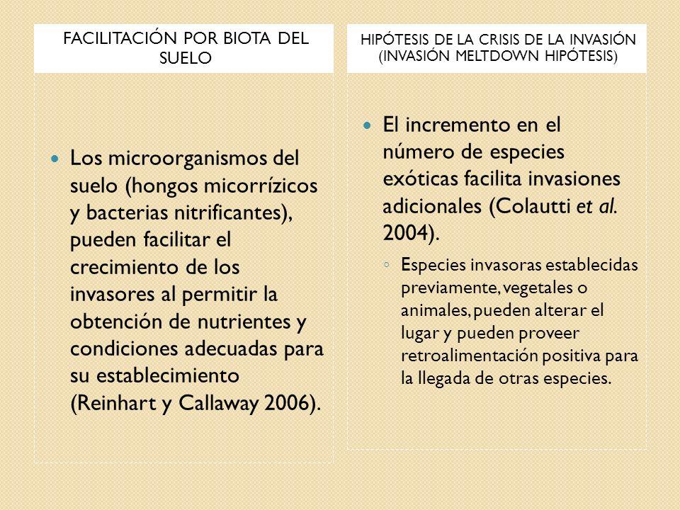 FACILITACIÓN POR BIOTA DEL SUELO HIPÓTESIS DE LA CRISIS DE LA INVASIÓN (INVASIÓN MELTDOWN HIPÓTESIS) Los microorganismos del suelo (hongos micorrízico