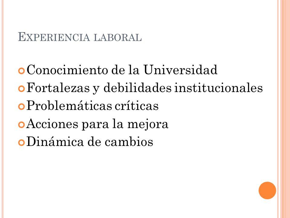 E XPERIENCIA LABORAL Conocimiento de la Universidad Fortalezas y debilidades institucionales Problemáticas críticas Acciones para la mejora Dinámica de cambios
