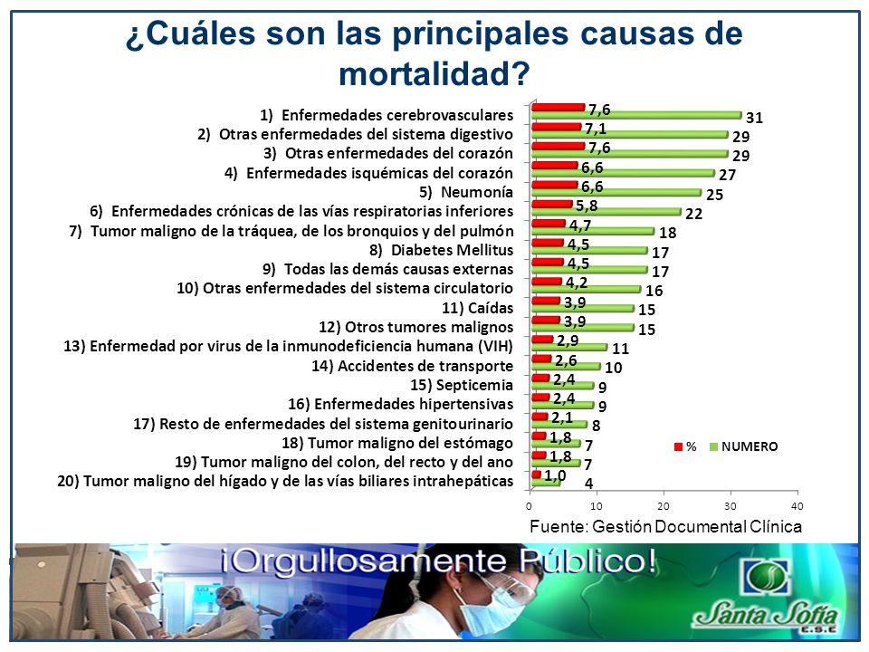 Fuente: Gestión Documental Clínica ¿Cuáles son las principales causas de mortalidad?
