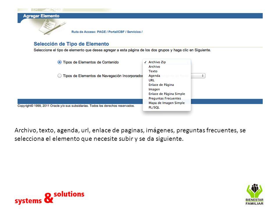Archivo, texto, agenda, url, enlace de paginas, imágenes, preguntas frecuentes, se selecciona el elemento que necesite subir y se da siguiente.