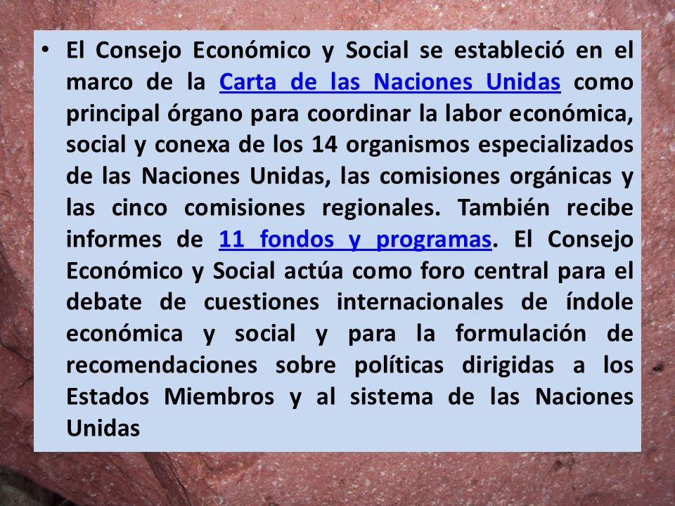 El Consejo Económico y Social se estableció en el marco de la Carta de las Naciones Unidas como principal órgano para coordinar la labor económica, so