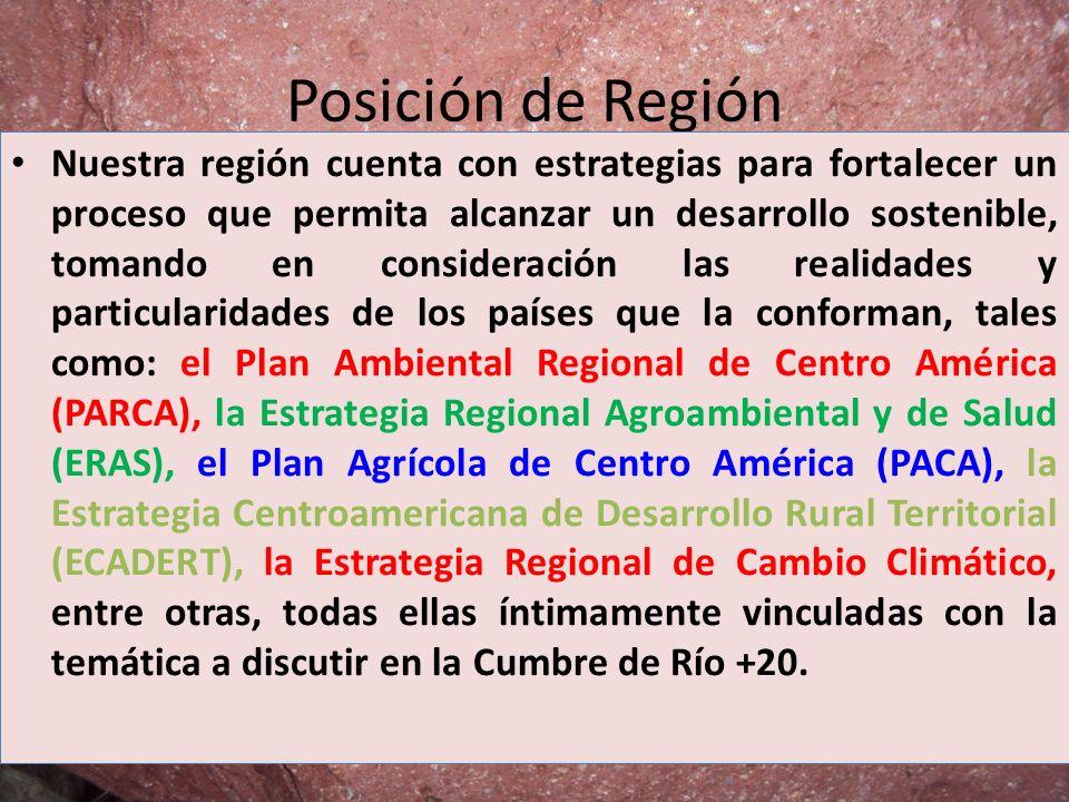 Posición de Región Nuestra región cuenta con estrategias para fortalecer un proceso que permita alcanzar un desarrollo sostenible, tomando en consider
