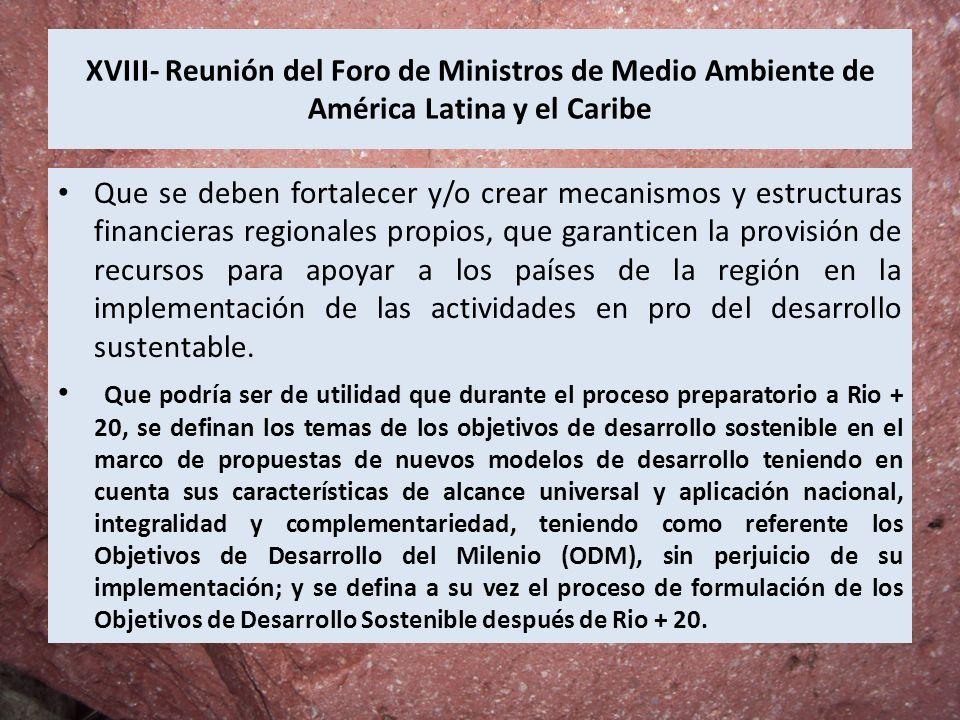XVIII- Reunión del Foro de Ministros de Medio Ambiente de América Latina y el Caribe Que se deben fortalecer y/o crear mecanismos y estructuras financ
