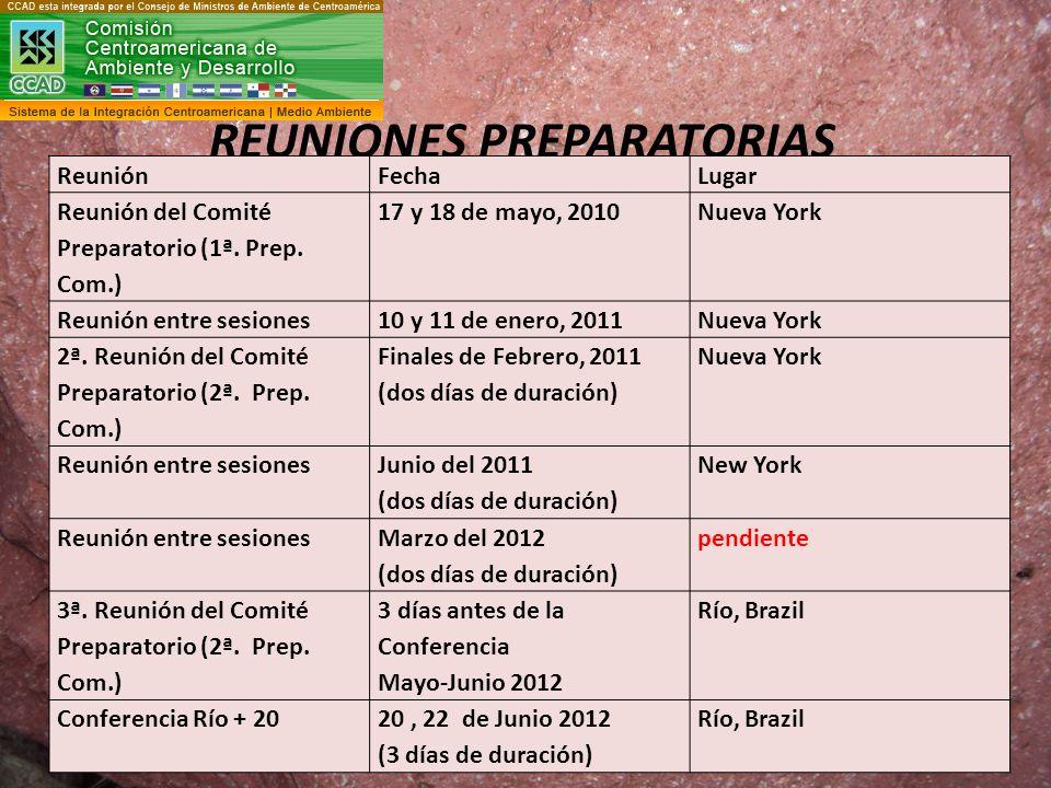 REUNIONES PREPARATORIAS ReuniónFechaLugar Reunión del Comité Preparatorio (1ª. Prep. Com.) 17 y 18 de mayo, 2010Nueva York Reunión entre sesiones10 y